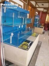 深圳玻璃魚缸制冷機 海鮮魚缸 定做東坦魚池圖片