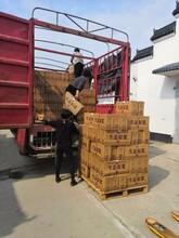 汕头革命小酒定制 革命小酒贴牌代加工优质厂家 可定制图片