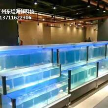南海玻璃魚池定做價格 生猛海鮮魚池圖片