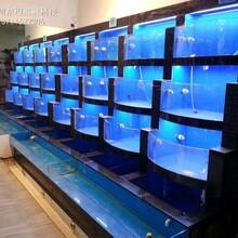 陽江飯店海鮮魚池定做哪家質量好 飯店海鮮魚池定做圖片