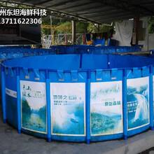 廣州越秀海鮮魚池定做公司 海鮮魚缸圖片