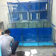 東莞莞城哪里定做大排檔海鮮魚池 飯店海鮮池圖片