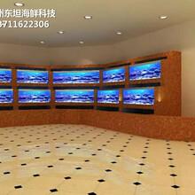 深圳光明海鮮池價格 海鮮魚池 定做東坦魚池圖片
