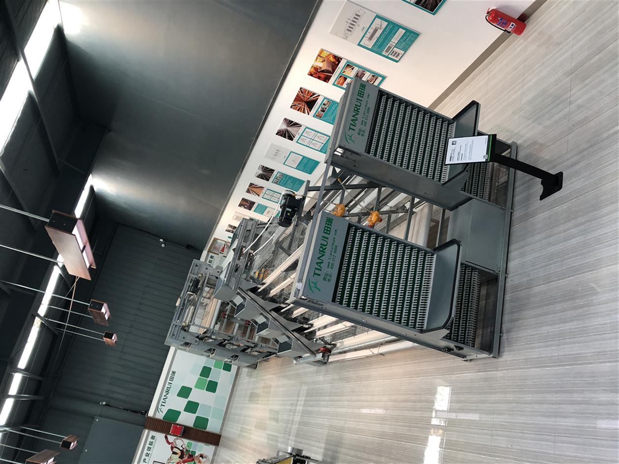 金華9TLD 系列階梯式蛋雞設備