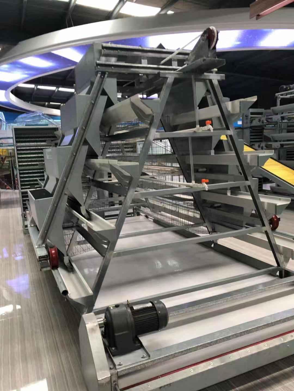 邢台9TLD 系列阶梯式蛋鸡设备