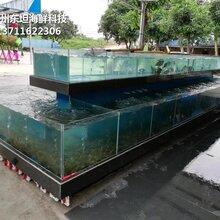 東莞茶山定做餐飲魚池 飯店海鮮池 貝殼魚池蝦蟹魚池圖片
