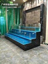 廣州從化定做海鮮市場玻璃魚池 水產店制冷魚池圖片