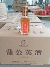 新鄉養生酒廠 養生酒定制代加工 果酒貼牌圖片