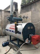 销售燃气蒸汽锅炉生产