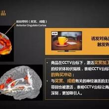 中央电视台黄金时间广告代理公司 中视海澜传播图片