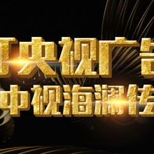 中央台美丽中国行广告播放 美丽乡村中国行图片