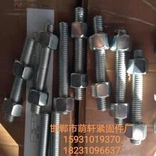 大慶雙頭絲出售 高強度雙頭螺栓圖片