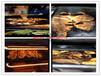 佛山電烤魚箱生產廠家 型號齊全 有現貨