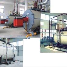 便携式节能燃气锅炉制造商图片