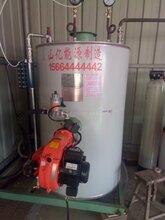 常德全新立式燃油气蒸汽发生器