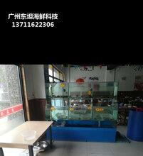龙岗菜市场海鲜缸定做电话 生猛海鲜鱼池