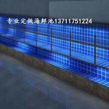 广州龙怡路海鲜池设计 海鲜鱼缸