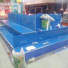 广州黄埔定做海鲜市场玻璃鱼池 可移动海鲜池