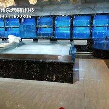 东莞万江定做海鲜鱼缸 酒店海鲜池