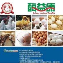 淄博禽专用的微生态饲料添加剂促销 宝来利来