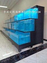广州车陂玻璃海鲜池制冷 海鲜池