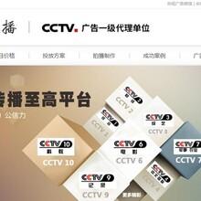 赣州央视1台广告多少钱 CCTV1图片