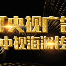 淄博央视1台广告咨询中心 央视一台 中视海澜图片