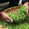 老挝茶叶进出口代理,熙海好牛一公司