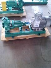 广东氟合金泵氟塑料化工泵厂家厂家直销图片