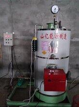 国产酿酒锅炉