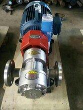 渣油泵细微颗粒泵ZYD合金钢外润滑齿轮泵泊海