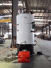 进口节能燃气锅炉厂