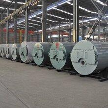 環保臥式燃氣鍋爐廠