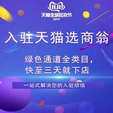 北京天猫代入驻代入驻 商翁天猫代入驻 商翁天猫加类目图片