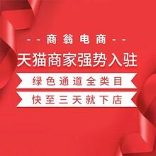 杭州天猫代入驻代入驻 商翁天猫代入驻 商翁天猫加类目图片