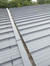连云港氟碳深灰色铝镁锰板YX65-300型 氟碳漆图片