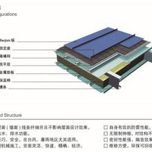 郑州1.0mm厚铝镁锰板YX65-300板型齐全 矮立边 氟碳漆图片