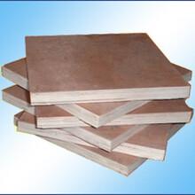 西北線材-在哪能買到價格適中的木膠板呢圖片