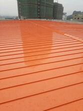 扬州1.0mm厚铝镁锰板YX65-430板型齐全 矮立边 氟碳漆图片