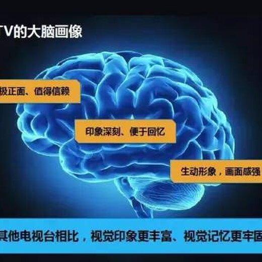 央视七套广告图