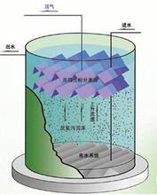 寶山厭氧反應器-善鼎環保提供劃算的UASB厭氧反應器圖片