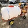 南通园林洒水专用喷雾器远射程的300型号灭虫喷雾器