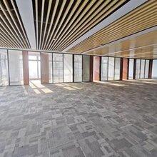 深圳湾科技生态园写字楼招商 面积大小都有