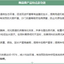 北京促进生和记娱乐注册酶益康多少钱 酶益康 欢迎咨询图片