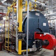 专业卧式燃气锅炉供应商 欢迎咨询