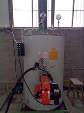 智能燃气锅炉价格 欢迎来电了解