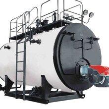 供应卧式燃气锅炉生产厂家 欢迎在线咨询