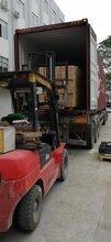 昆明到墨尔本超市货物运输费用 国际海运 正规运营