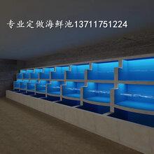 白云新市海鲜池订做加工 超市生鲜海鲜池定做 免费咨询