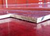 玉樹建筑竹膠板-奇億工貿質量好的竹膠板供應